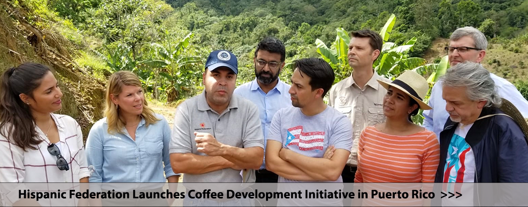 Working to Revitalize Puerto Rico's Coffee Industry